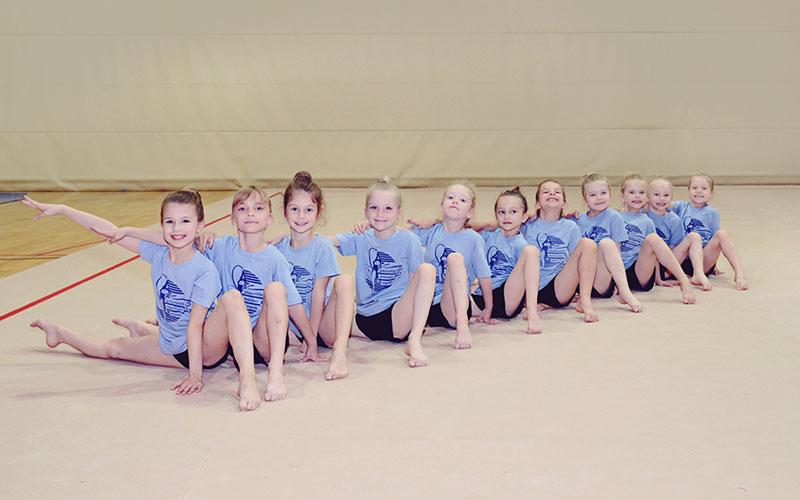 Škola gimnastike